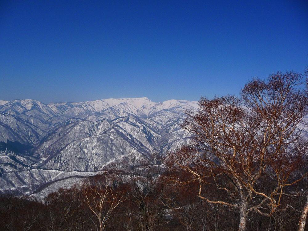 20110410_tairappiyo01