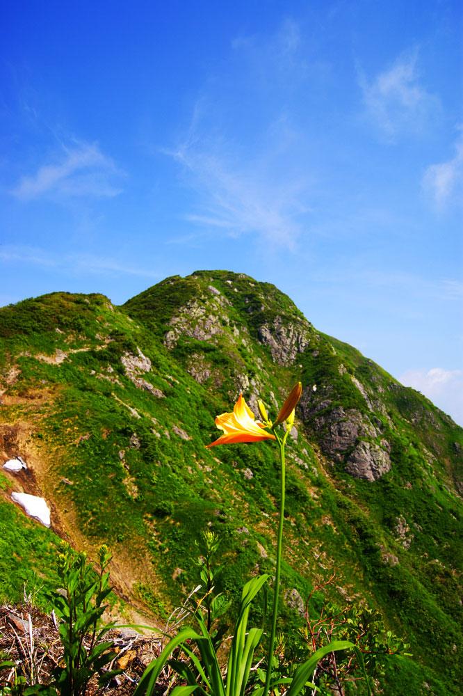 20120728_nakanodake-tanngo005