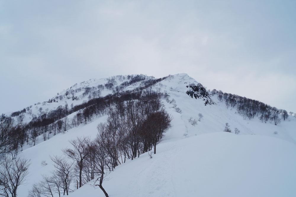 20140316_kamigongen001
