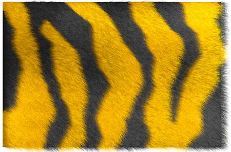 tiger_mt