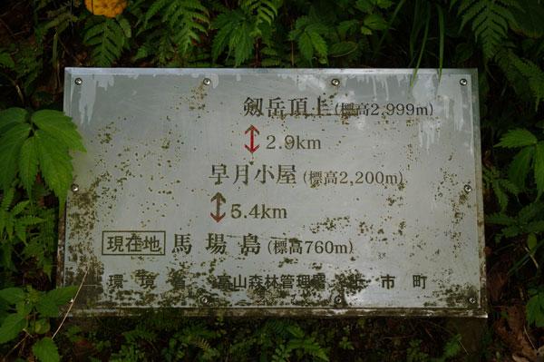 DSC08906