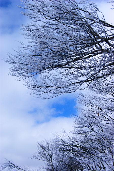 201003_Shimogongen5