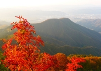 20131102_dairiki-kasakura009