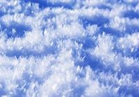 20110216_snow-img006